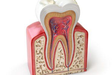 Leistungen – Zahnärztlich